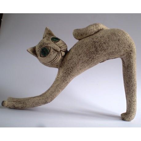 Kočka lenivá